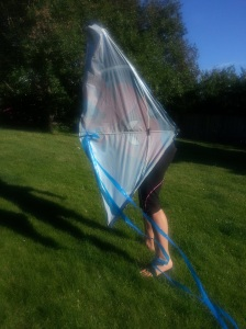 Trying to fly a kite in our backyard